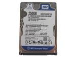 "Western Digital WD2500BEVS 2.5"" SATA Hard Drive"