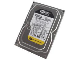 """Western Digital WD2503ABYZ Western Digital RE4 WD2503ABYZ 250GB 7.2K Enterprise 3.5"""" SATA Hard Drive"""